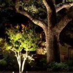 outdoor lighting drama