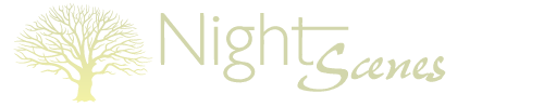 NightScenes Landscape Lighting