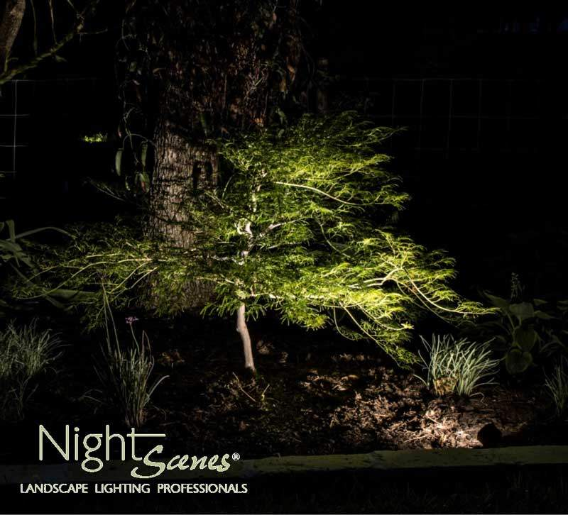 Landscape Lighting Specialists We Try To Relieve Outdoor
